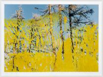 Gerhard Richter, Abstrakt, 26.5.92, 1992. Deutsche Bank Collection. � Gerhard Richter